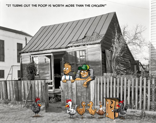 OldHouse_chickenpoop tin roof