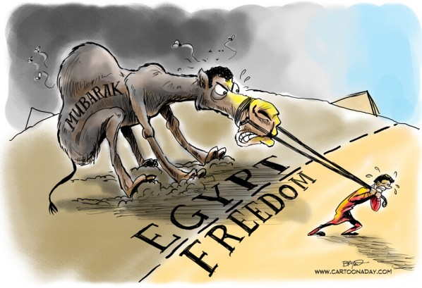 Egypts Mubarak Stubborn Political Cartoon