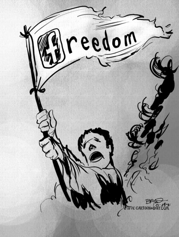facebook-freedom-cartoon-egypt-grey