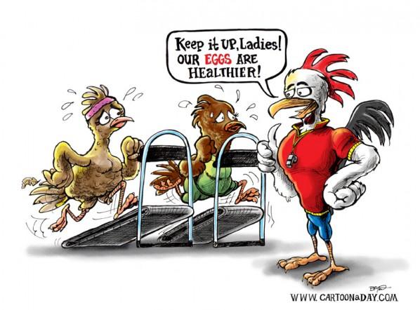 healthy-eggs