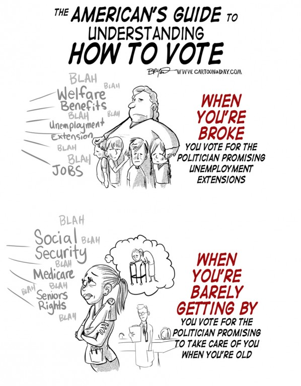 how-to-vote-guide-economy-cartoon-a