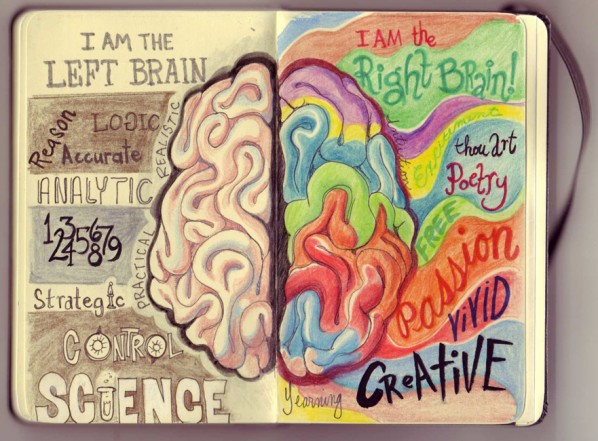 Left Brain Right Brain Illustration