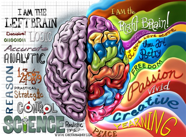 Left Brain Right Brain Illustration Cartoon