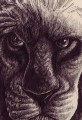 Pen Sketch Cartoon Lion