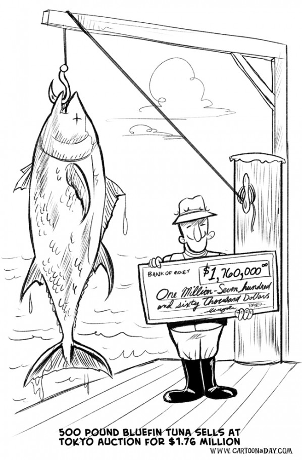 bluefin-tuna-cartoon