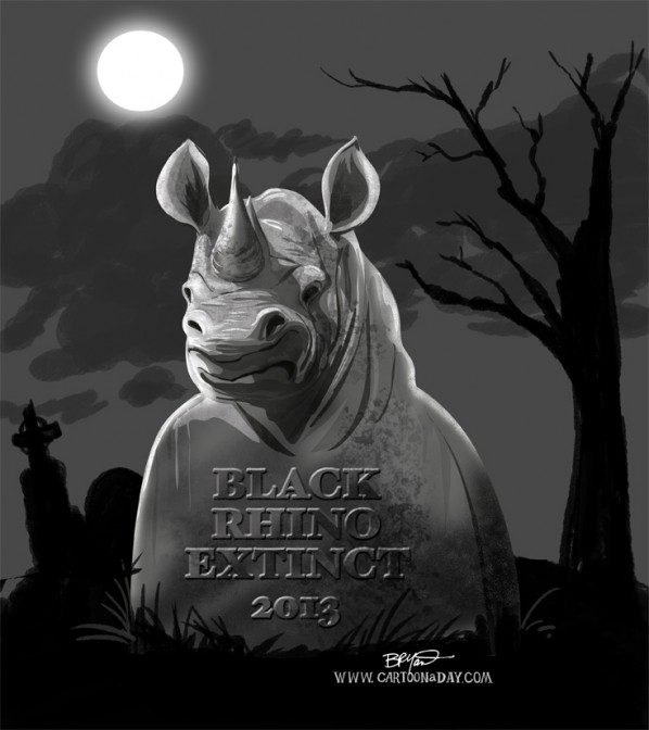Black Rhinos Now Extinct