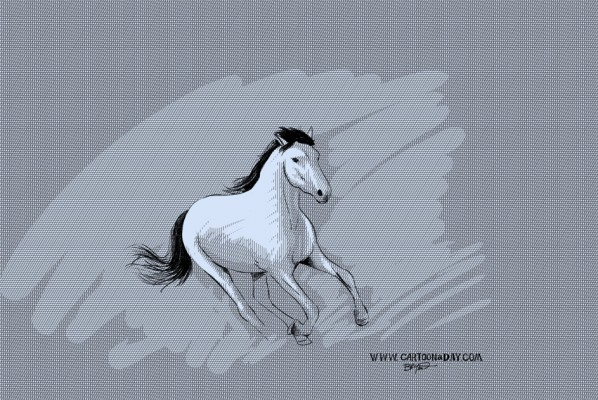 wild-horse-cartoon