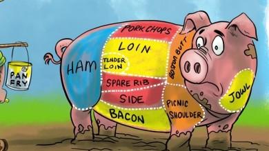 pig meat cuts cartoon cartoon