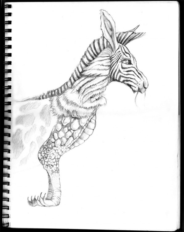 hybrid-animl-drawing-bw