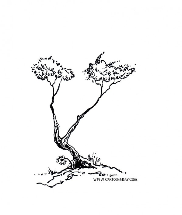 bush-tree-variation-ink-sketch
