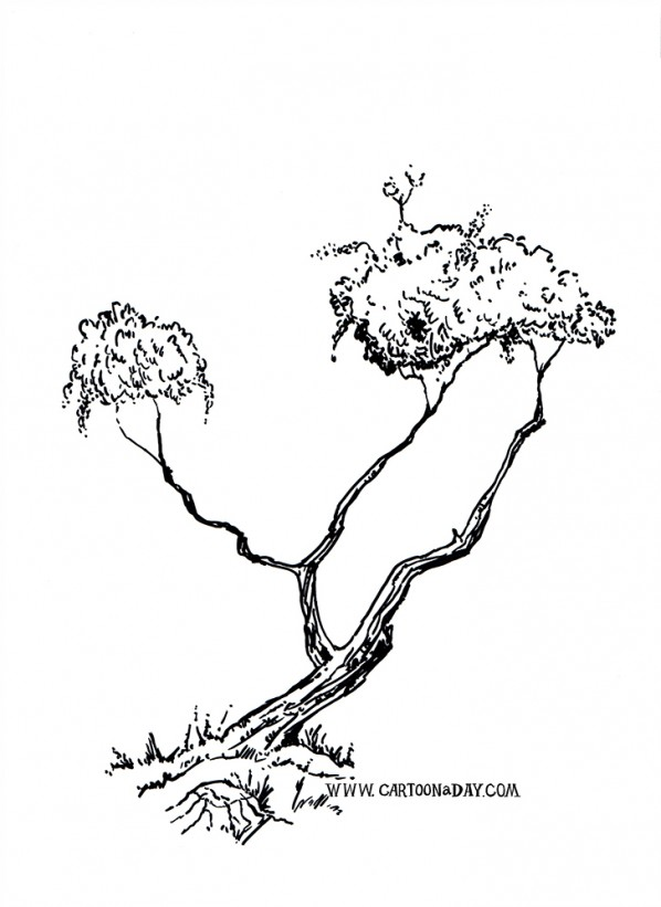 bush-tree-variation-ink-sketch-black
