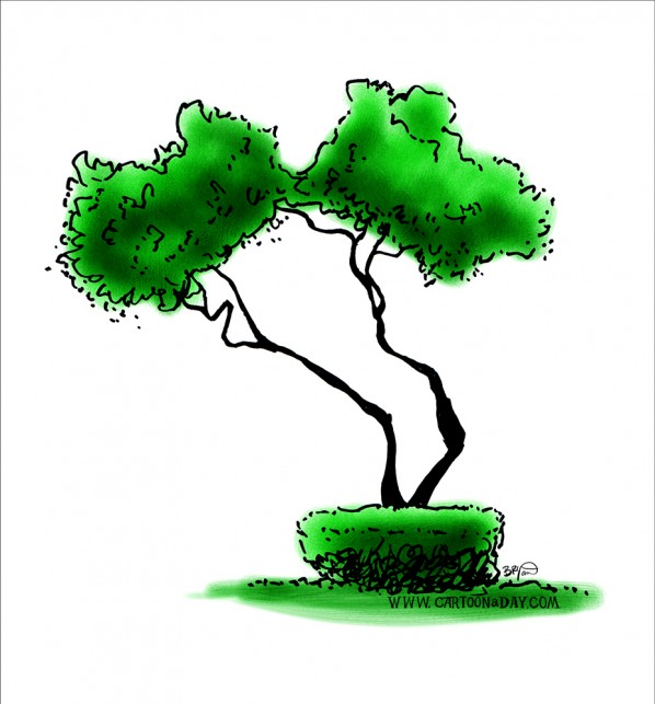twiggy-bush-sketch