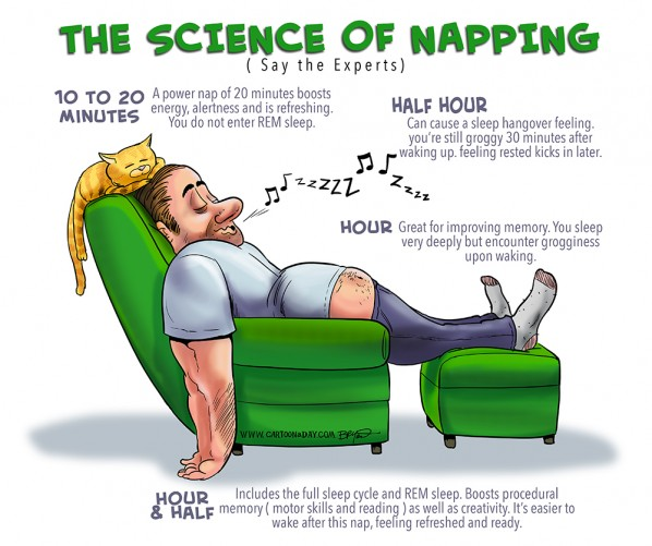 science-of-napping