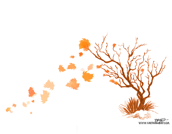 fall-tree-falling-leaves