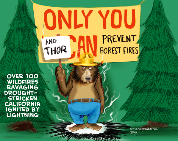 bear-prevent-forest-fires-cartoon-598