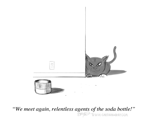 cat-soda-bottle-cap-cartoon-598