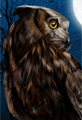 Horned Owl Digital Painting