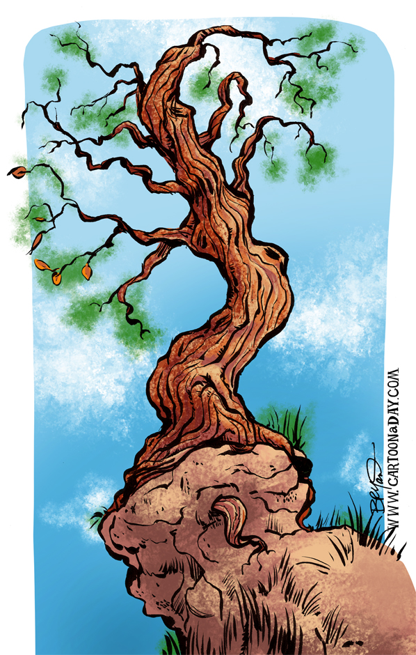 old-gnarly-tree-sketch-cartoon-598