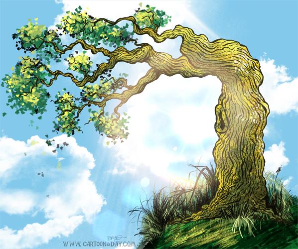 overhanging-tree-sketch-cartoon-598