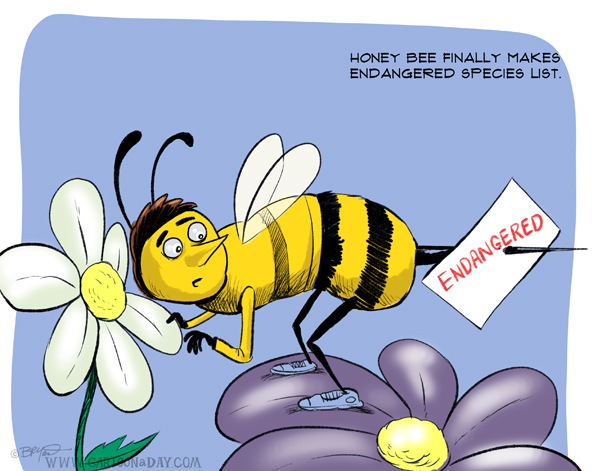 Endangered-honey-bee-cartoon-598