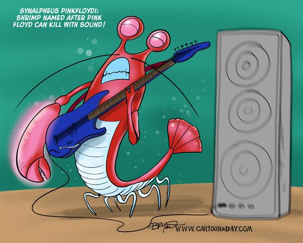 pink-floyd-shrimp-598