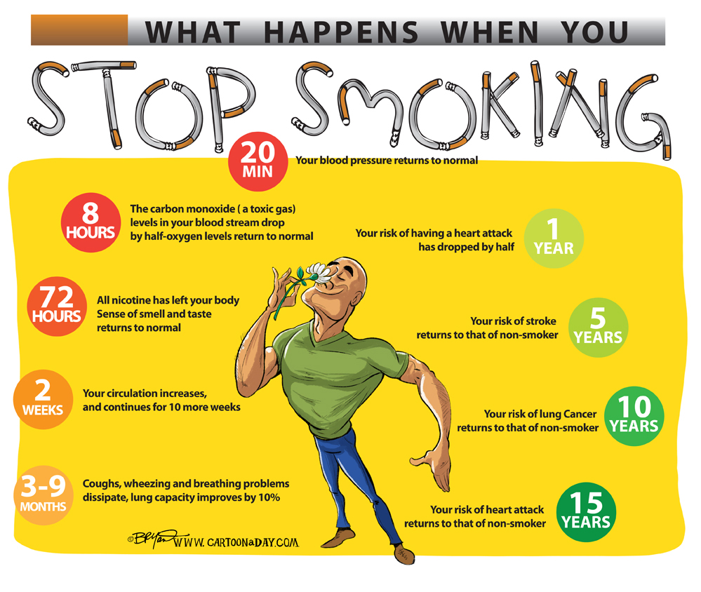 What Happens When You Quit Smoking Cartoon Cartoon A Day