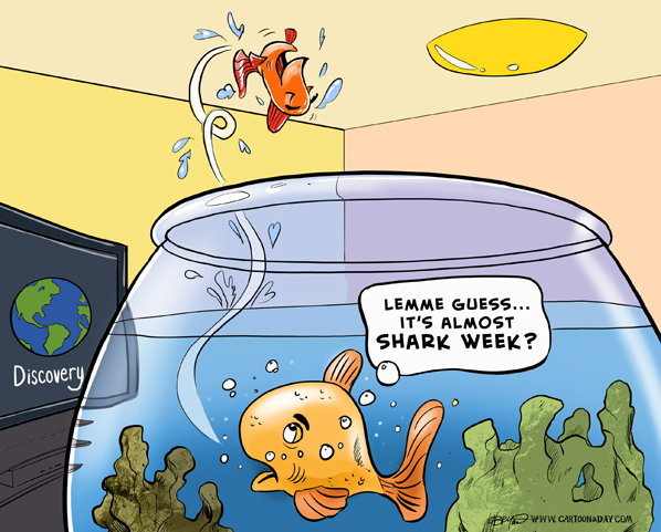 Shark-week-schedule-cartoon-598