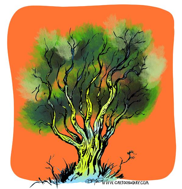 Twiggy-tree-bushy-598