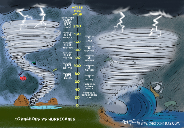Hurricane-vs-Tornado-cartoon-598