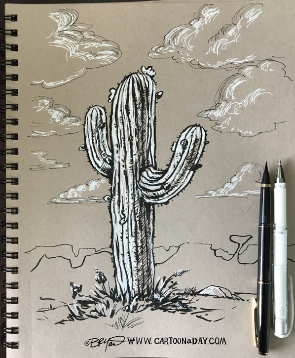 cactus-sketchbook-598