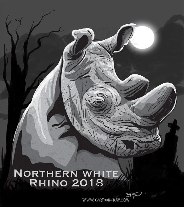 northern-white-rhino-dies-gravestone-598