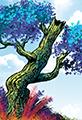 Twiggy Tree Sunny Day