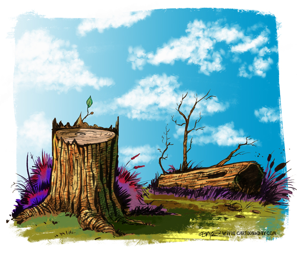 Twiggy-tree-stump-598