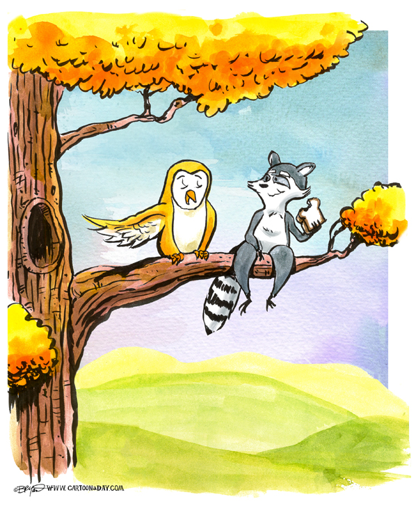 raccoon-and-owl-in-tree-598