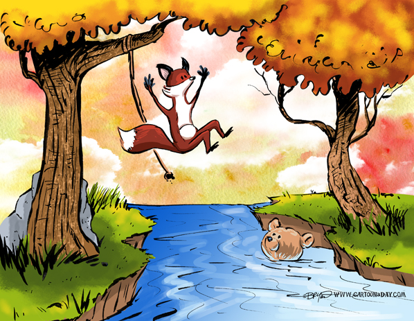 Fox-bear-swimming-hole-598