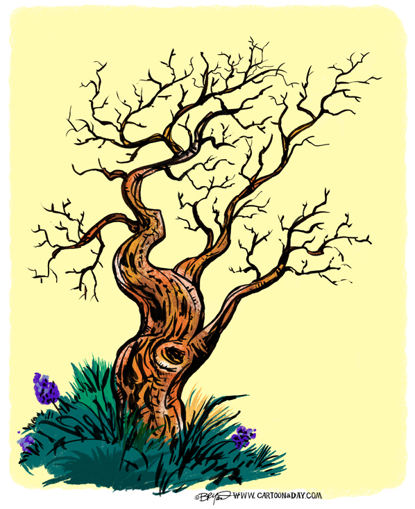 twiggy-tree-summer-598