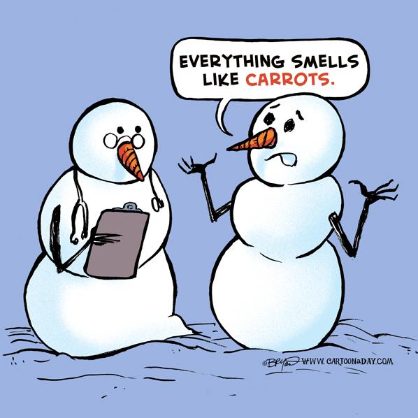 snowman-cartoon-carrotos-joke-598