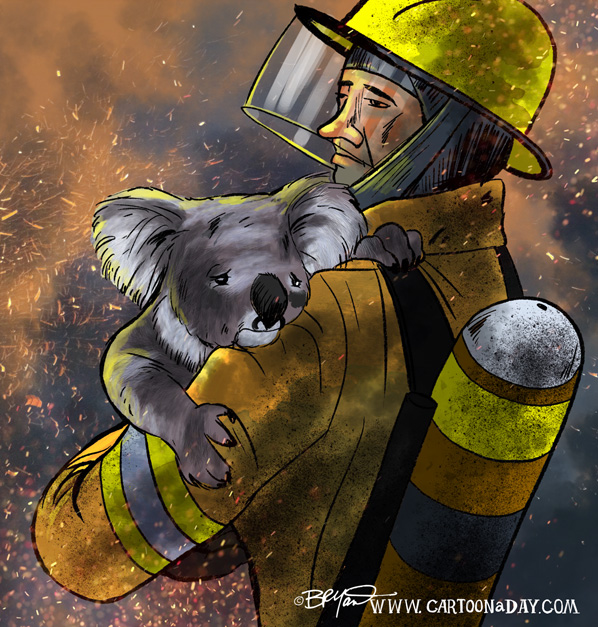 australia-fires-cartoon-598