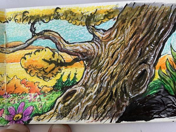 sketchbook-road-tree-598-D