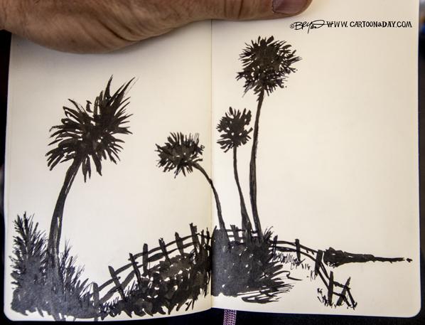 palm-silhouette-shore-598