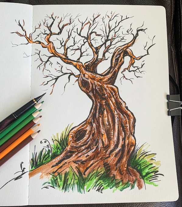 twiggy-sketchbook-tree-pencil-598
