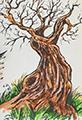 Twiggy Tree Sketchbook Colored Pencil