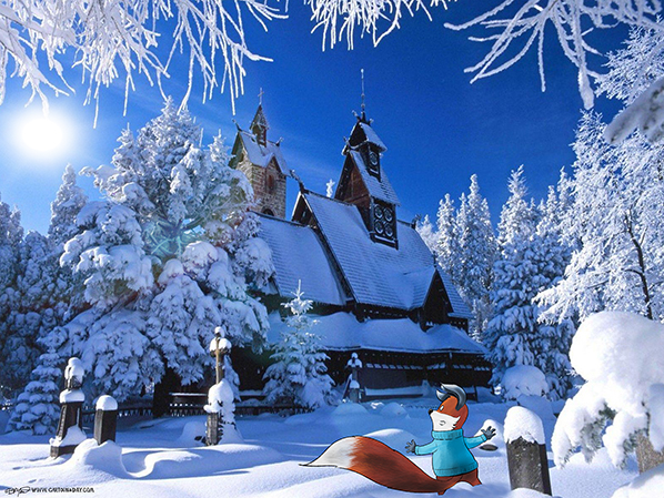 Kit-fox-winter-home-598
